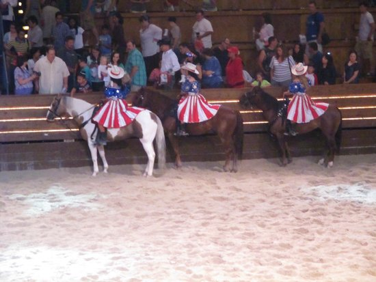Beautiful Arena And Great Show Picture Of Dixie