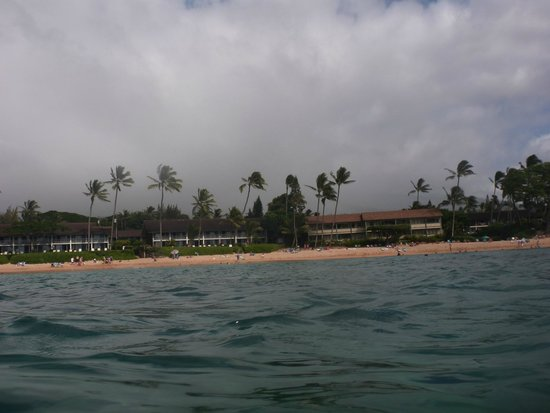 The Napili Bay: A view of Napili Bay condos from a reef in front of the unit.