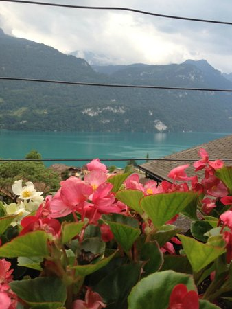 Hotel Lindenhof: View from the dining patio