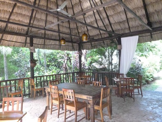 Table Rock Jungle Lodge: dining room/bar