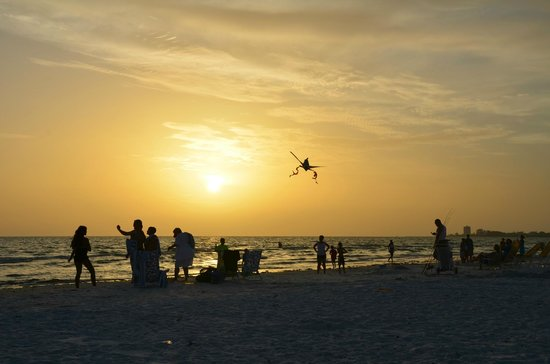 Siesta Beach : kites flying at sunset