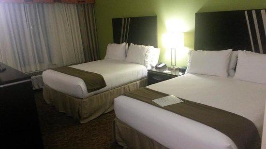 克萊門森智選假日套房飯店照片