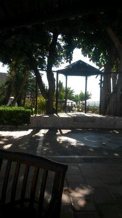 Hotel Son Caliu Spa Oasis: Terrace