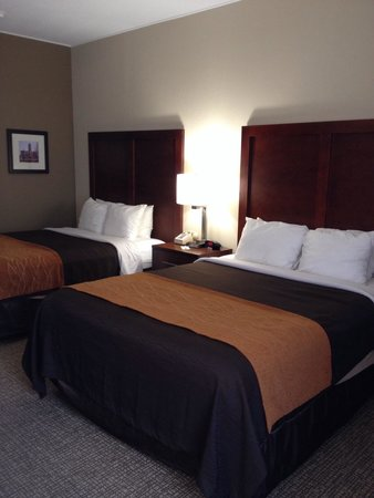 Comfort Inn Clemson University Area: Loved their newly renovated rooms.. New carpet, furniture and everything