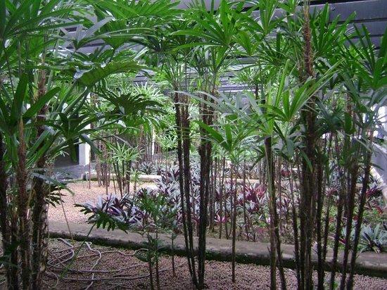 Jardim em perspectiva no Minascentro  Foto de Minascentro, Belo