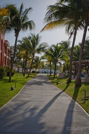 Barcelo Maya Beach: ...