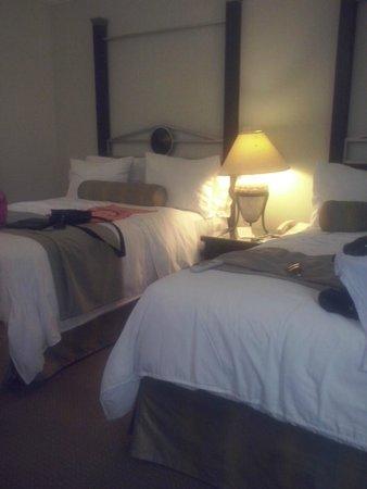 Hotel Antarisuite Cintermex: Camas bastante comodas