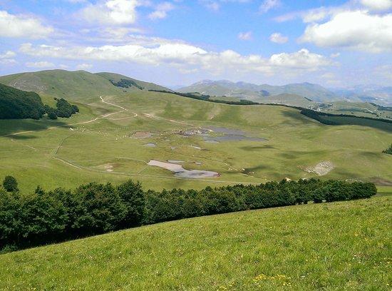 Alta Montagna Bio s.s.