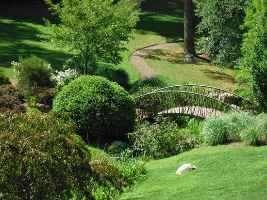 Sarah P. Duke Gardens: bridge
