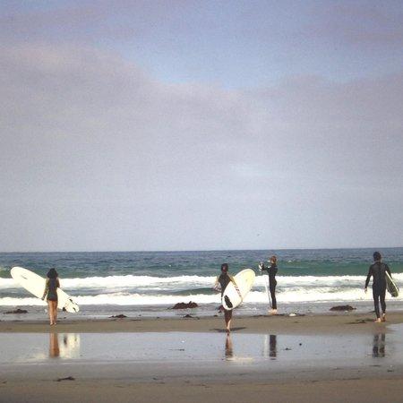 Estancia La Jolla Hotel & Spa : Family surfing ...