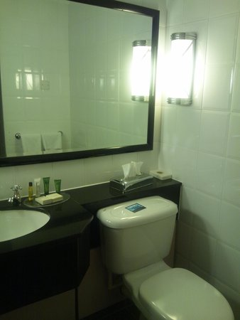 Hilton Manchester Airport: バスルーム