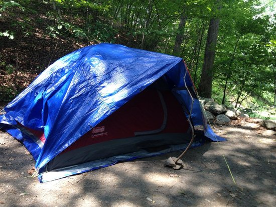 Cranberry Run Campground: Tent Campsite