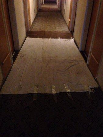Hotel IBIS Tianjin Railway Station: Guest floor corridor