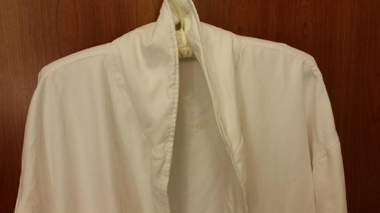 The Westin Minneapolis: Dirty robe