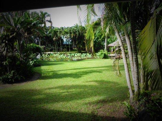 Muri Beachcomber: Peaceful & Private