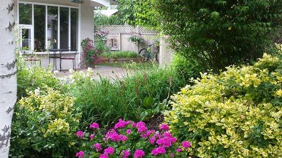 At The Beach Bed and Breakfast : Front gardens