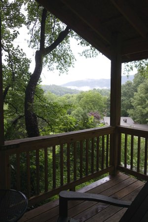 Beechwood Inn: View from the Cottage Porch