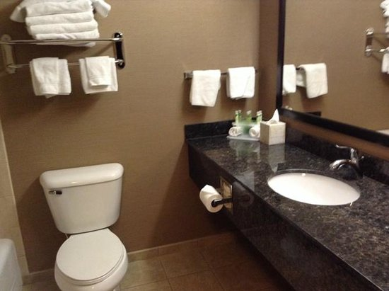 Holiday Inn Express Hotel & Suites Moab : Nice, clean bathroom - very roomy