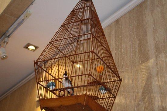 Marina Mandarin Singapore: The morning song birds to wake up to.