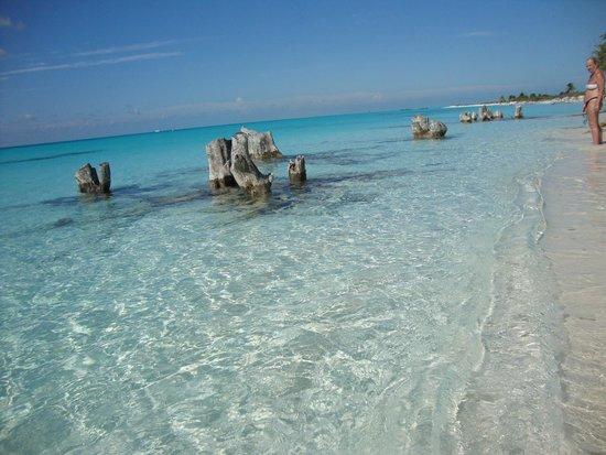 Playa Paraiso: Naturaleza que ilumina la transparencia del mar !!