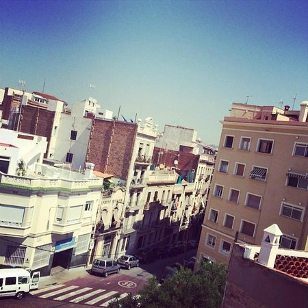 Zoo-LoCo ArT-HoUsE: view from the roof top terrace