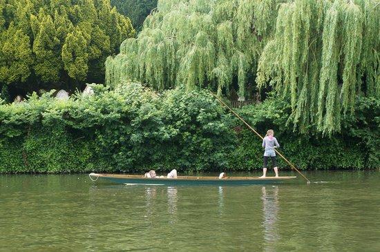 River Avon: 雅芳河