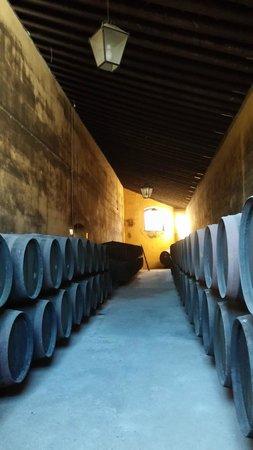 Catedral de Jerez de la Frontera : sherry caske