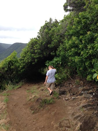 Pololu Valley Lookout : hiking down