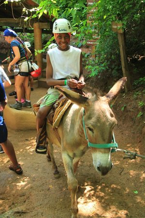 Vallarta Adventures - Las Caletas Beach Hideaway: donkey ride up the mountain (parents must assist)