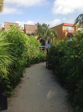 Catalonia Playa Maroma: path from beach to Building 6