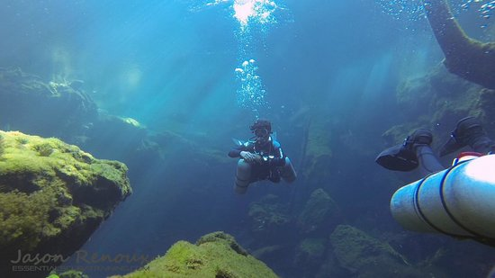 Essential Scuba Training: Mind blowing, vibrant images will be delivered to you after your training