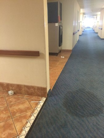 Super 8 Page/Lake Powell : Trash on the 2nd floor that was not cleaned up for 2+ days.