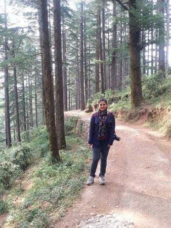 Club Mahindra Kanatal: Peace of morning