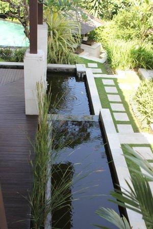 Leha Leha Villa: Pond