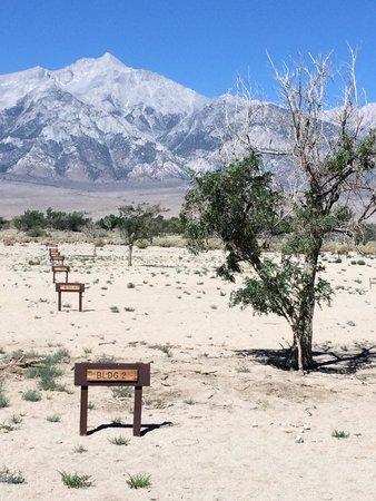 Manzanar National Historic Site: Block 10 building location markers