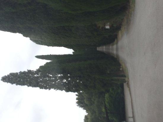 Borgo Scopeto Relais : Entrada de cinema