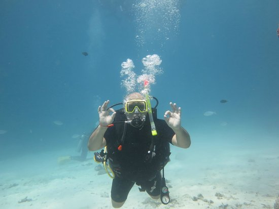 Phuket Dive Tours: Everything is A-OK