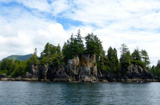 Subtidal Adventures: Rocky Island Shore