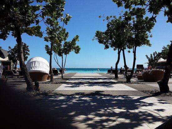 InterContinental Fiji Golf Resort & Spa: Adults Only Infinity Pool