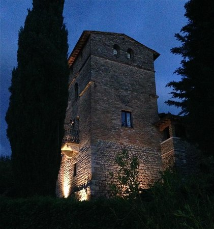 Agriturismo Niccolai Torre Palagetto: Night shot of the grounds