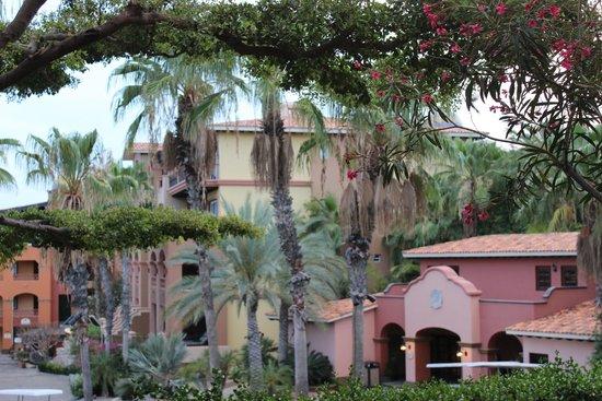 Hacienda del Mar Los Cabos: Landscaping