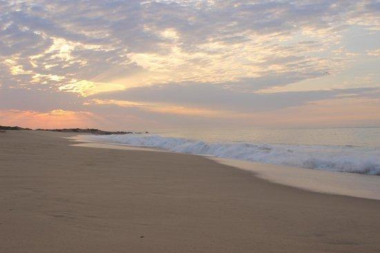Hacienda del Mar Los Cabos : Sunrise at the beach