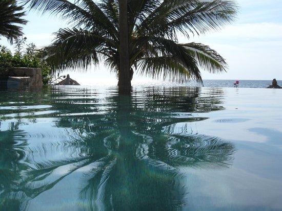 Hacienda del Mar Los Cabos : Pool