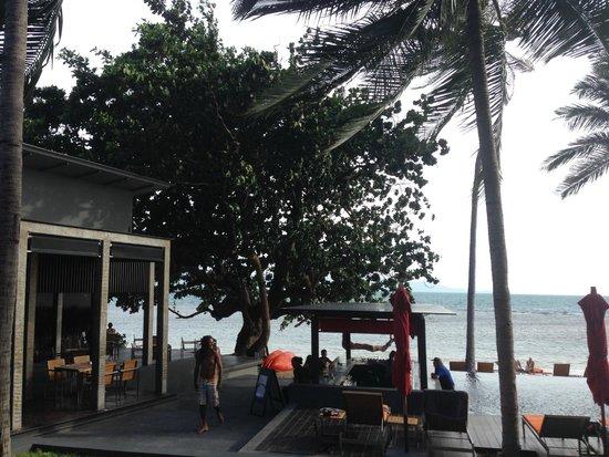 The Coast Resort - Koh Phangan: beach bar