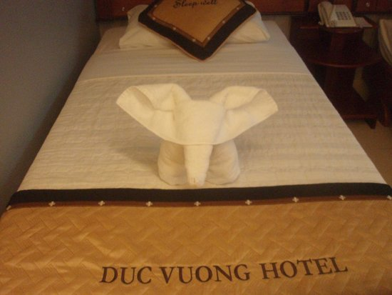 Duc Vuong Hotel: Creative towel designs