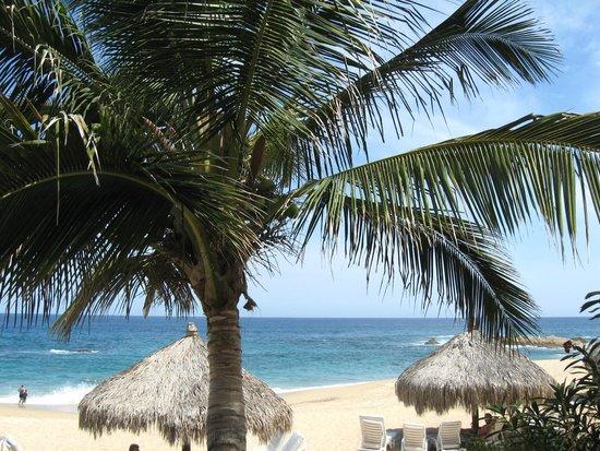Hacienda del Mar Los Cabos: Beautiful beach views