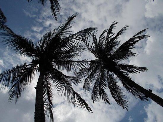 Anantara Riverside Bangkok Resort: lovely weather