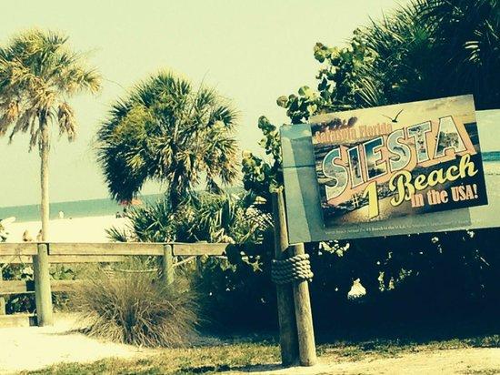 Siesta Beach : #1 Beach
