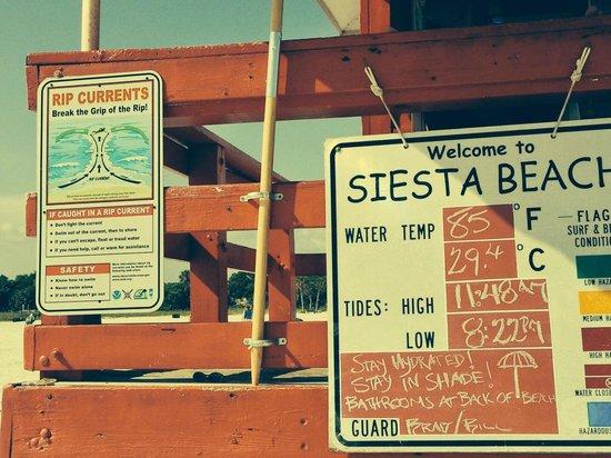 Siesta Beach : 85 degree water! (F)