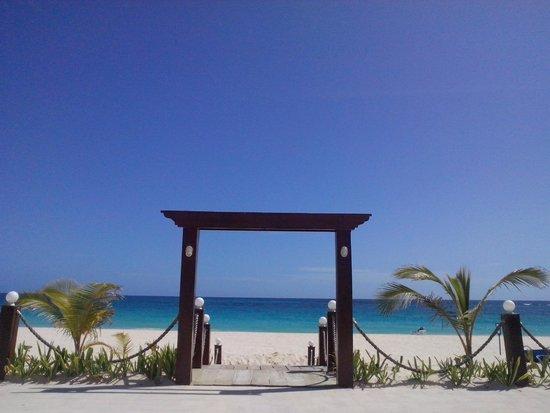 Barcelo Bavaro Beach - Adults Only: Paraiso Terrenal